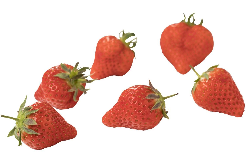 hollandse aardbeien klein